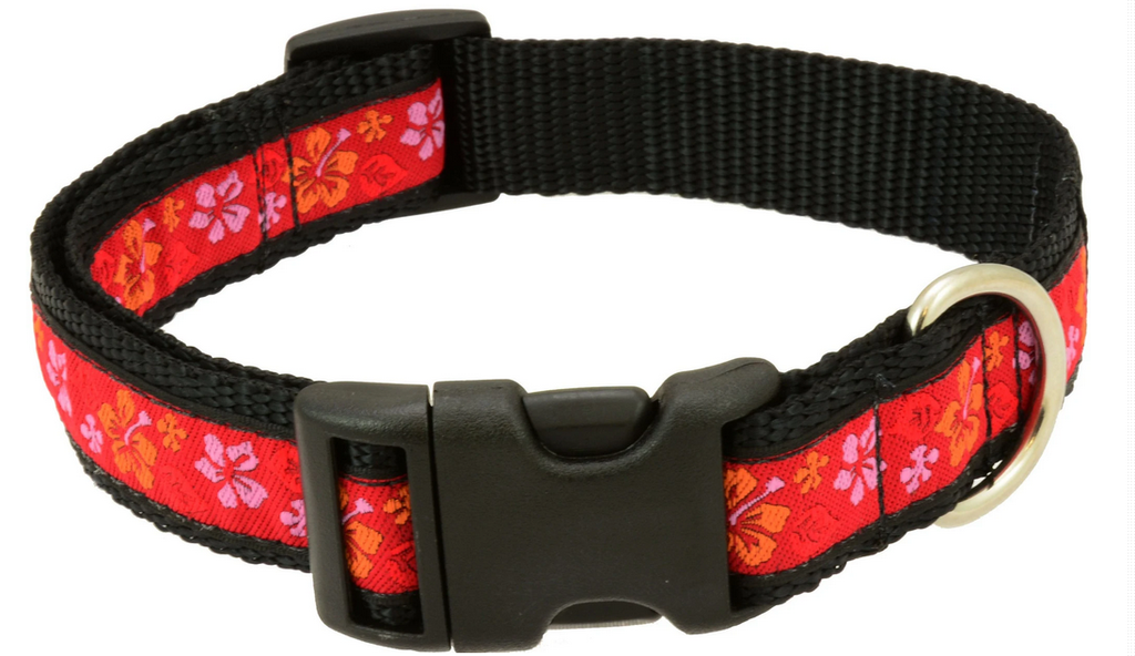 "Silverfoot Dog Collar - Maui Waui Red MW1 (10""-16"")"