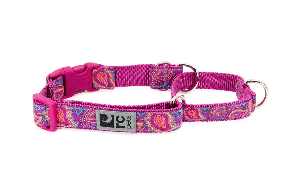 RC Pets Easy Clip Web Training Collar (Bright Paisley)