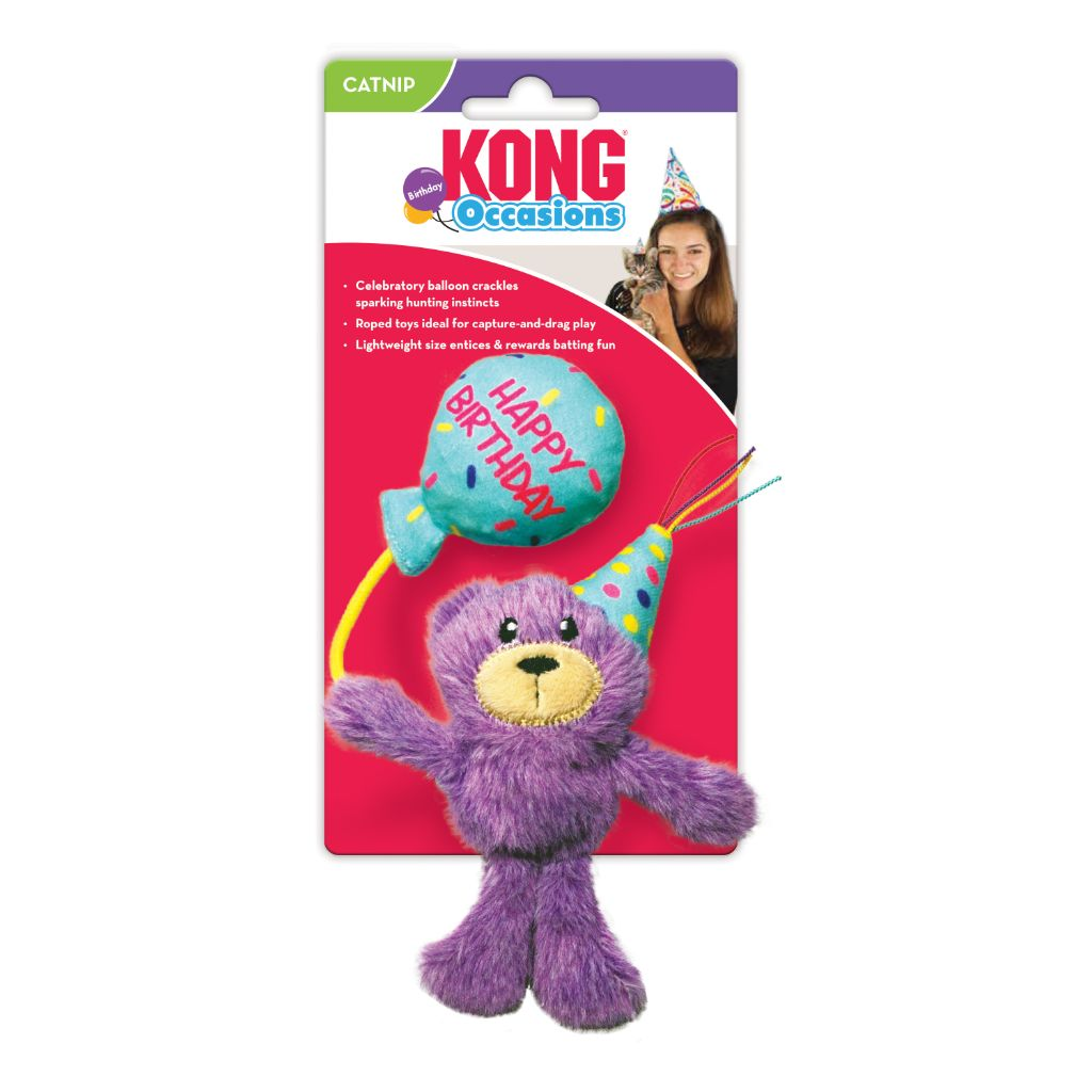 Kong Occasions Birthday Teddy | Cat