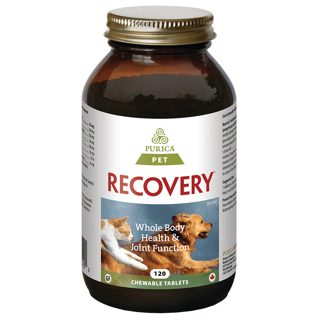 Recovery SA Chewable Tabs (120 pack)